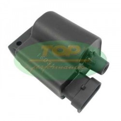 Коммутатор TOP Performances для Aprilia, Derbi, Piaggio, Vespa 50-100, Ignition Coil with CDI CA00008 (6399786)