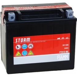 Аккумуляторная батарея Fiamm FTX12-BS